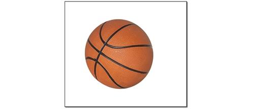 "Harvil 7"" Mini Basketball at Sears.com"