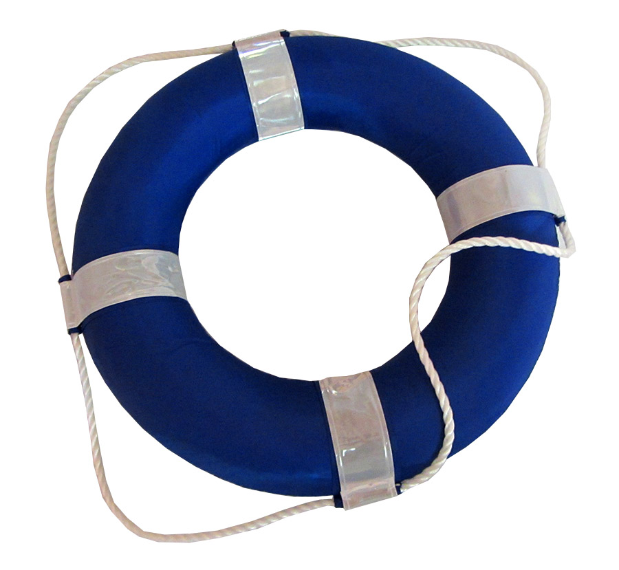 Blue And White Foam Ring Buoy For Swimming Pools 19 Inch With Perimeter Rope Ebay